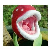 Wholesale insect catching plant enchantress Carnivorous plant desk Pot Bonsai seeds Slurperon seeds bag