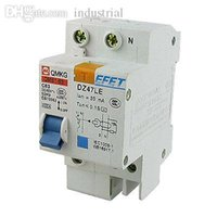 Wholesale DZ47LE P N DIN Rail Mount ELCB Earth Leakage Circuit Breaker A