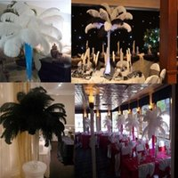 Wholesale Hot Inch Black White Natural Ostrich Feathers Plume Wedding Party Birthday Decoration Supply