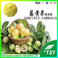 Wholesale Best quality garcinia cambogia extract g