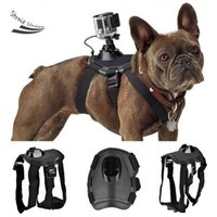 Wholesale Floor Price Fetch Dog Mount Dog Harness Chest Strap Mount For GoPro Hero SJ4000