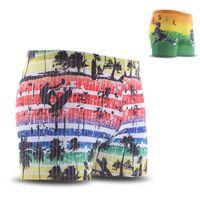 Wholesale High Quality Quick drying Swimming Trunks Beach Shorts Surf Printed Boxer Swimwear Men Swim Shorts Swimsuit Free Size UL0046 salebags
