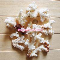 aquarium shops - Broken coral shop tank bottom good baby coral conch shells DIY Home Furnishing aquarium decoration grams