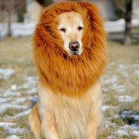 Wholesale Pet Costume Lion Mane Wig For Dog Halloween Festival Fancy Dress Up Colors