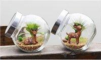 Wholesale Pastoral Glass moss terrarium air plants indoor garden terrarium pot Little Animals planter globe terrarium for home bottle