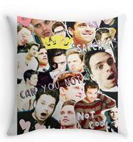 Wholesale Cool sebastian stan collage Square Zippered Throw Pillowcase Beauty Decorative Cover Twin Side Print