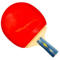 Wholesale A DHS E E406 double reverse penhold racket sports type with cover single block