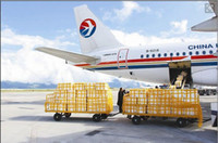 Cheap Postage for DHL EMS UPS China post epacket.the extra shipping cost