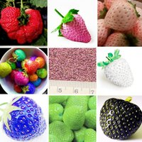Cheap 100 PCS Japanese Hokowase Strawberry (Fragaria Hokowase) Seeds Indoor Outdoor Plant Fruit Strawberry