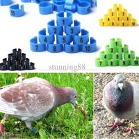 Wholesale mm Poultry Leg Bands Bird Pigeon Parrot Chicks Rings Numbered tracking number