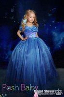 Wholesale Blue Inspired Cinderella Princess Tutu Ball Gown Floor Length Tulle Pageant Flower Girl Dresses With Removable Bow