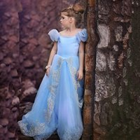 Wholesale 2016 Cheap Blue Ball Gown Flower Girls Dresses For Weddings Floor Length Organza Tulle Girls Pageant Princess Party Dresses Cosplay Costume
