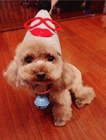 Wholesale Pet Birthday Party Hat Cute Headdress For Holidays Adorable Headgear Small Baby Types Avialable GP160118