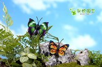 Wholesale New Mini Insect Artificial Butterfly Sanimals Ornaments Miniatures For Fairy Garden Gnome Resin Crafts Bonsai Bottle Garden Decoration jy770