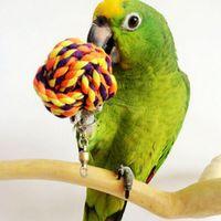 Wholesale Fashion Cotton String Pet Bird Parrot Parakeet Ball Toy Cockatiel Conure Chew Bites Cages Craft Birds Toys