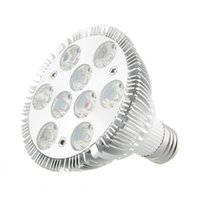 Wholesale E27 LED W Saving Efficient Effective Red Blue Practical Garden Indoor Plant Grow Light Hydroponic Bulb