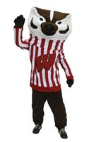 Wholesale Professional custom high quality adult size cartoon Bucky Badger Mascot Costumes carnival costumes