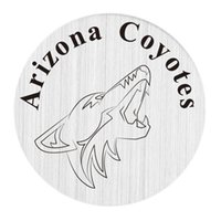 beads arizona - Stainless Steel Silver Letter Plate for mm Floating Charms Glass Locket The Love for Arizona Coyotes