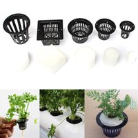 baskets for plants - Mesh Pot Net Basket With Clone Cloning Hydroponic Collar Foam Insert Plant For Plants Growth Accessories
