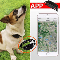 Wholesale Dog Cat Animal Collar iOS Andriod APP for Mobile Device GPS SIM Card Pet Tracker Locator Water resistant Anti Loss