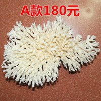 Wholesale A map of the cedar twigs of white coral coral aquarium aquarium design gift kg