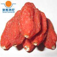 Wholesale organic dried ningxia goji berry crop tea wolfberry fruit dried medlar tea
