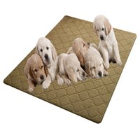 Wholesale Plush artificial machine show coral ground mat suitable for pets sleep play And non slip protection floor manufacturers Order