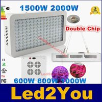 Wholesale Hot Sale W W W Double Chips LED Grow Light Full Spectrum For Veg Bloom Hydroponic Planting EU AU US UK Plug