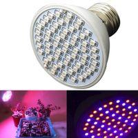 Wholesale 6W V Hydroponics Lighting E27 Led Bulb Red Blue Full Spectrum Hydroponic LED Plant Grow Lights