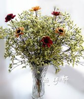 Wholesale Crystal flower flower Yunnan really natural grass living flower table all match decorative props holding flowers Pictures window