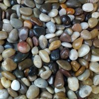 Wholesale 1500g Gardening supplies aquarium natural pebbles head stone for flower pot hydroponic gardening decoration Multicolor free delivery