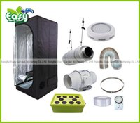 Wholesale Hydropoinics Complete indoor grow tent kits x60x140cm with DWC bucket LED grow light and ventilation equipment