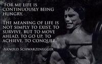 abstract art inspiration - A894 Arnold Schwarzenegger Inspiration Bodybuilding Workout Art Silk Poster Room Wall Decor x36inch