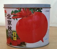 beijing cans - Beijing autumn red big radish A generation of hybrid spicy radish taste slightly sweet disease resistant strong g cans