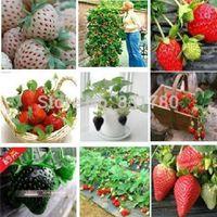 Wholesale 1000 colors strawberry seeds fruit strawberries seeds flower seed garden indoor DIY Garden bonsai flower pots planters