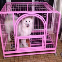 Wholesale Pet Dog Kennels Pet Supplies Folding Square Tube Paint Iron Cage Easy Clean with Wheels for Alaska Jusky Golden Satsuma by DHL EMS