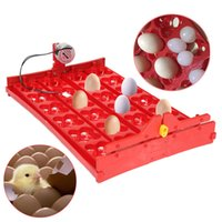 automatic tray - High Quality Incubator Eggs Bird Incubator Egg Rack Tray Automatic Egg Incubator Eggs Quail Parrot Incubation Tool