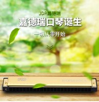 Wholesale The hole tremolo harmonica for beginners C entry students teaching practice of adult children playing musical instruments