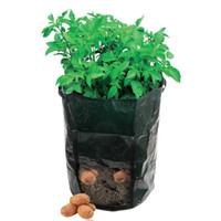 Wholesale 1Piece Potato Patio Planter Planting Bags PE Grow Bags Garden Pots Planters Creative Garden Products