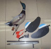 Wholesale New fashion high quality Mallard Drake with Remote Motion MOJO Duck Decoy Duck Hunting Decoys