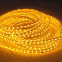Wholesale price m LEDs SMD LEDs Waterproof flexible led strips light V V CE ROHS ETL SAA Standard