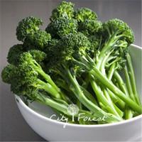 baby vegetable seeds - Aspabroc Baby Broccoli Vegetable Seeds Bag Non GMO Easy to Grow from Seeds Heirloom Vegetable Seed