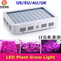 Wholesale 600W W W Hot Sale Double Chips LED Grow Light Full Spectrum For Veg Bloom Hydroponic Planting EU AU US UK Plug