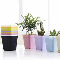 Wholesale Lovely Flower Pots succulents Mini Flowerpot Garden Degradable City Colors Plastic Plant Pots Planters Decoration Home Office Desk Garden