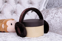 Wholesale Brand New Fashion Music Earmuffs Winter Ear Warm headphones music Fashion earmuffs Chocolate Color