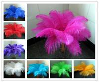 achat en gros de pièce de 12 pouces-Vente en gros! Bricolage 10 plumes d'autruche couleur 10-12 pouces / 25-30 cm parties de festin de plumes d'autruche TNM-14