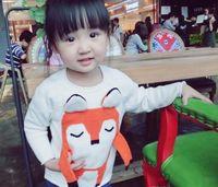 Wholesale Girls D fox sweater Kids INS cute fox cotton clothes spring autumn shirt children girl outwear sweater