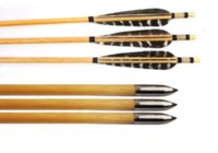 arrow fitness - 12pcs pack grain inch in length Archery Hunting Wooden Arrows for Bows inches fitness grain grain