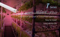 Wholesale LED GROW LIGHTS LED COLOR MIXING TECHNOLOGY T5 SERIES FULL SPECTRUM W CM FOR PLANTING FACTORY