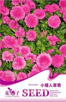 aster callistephus - Flower China aster Seeds Original Package Garden bonsai Flower seeds Easy Grow Callistephus bags per